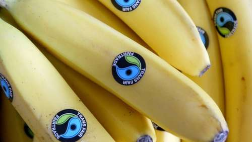"Rosen, Kaffee, Bananen: ""Fairtrade"" boomt"