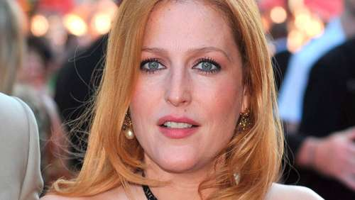 "Gillian Anderson: Süßer Tweet für ""50 Shades of Grey""-Christian"