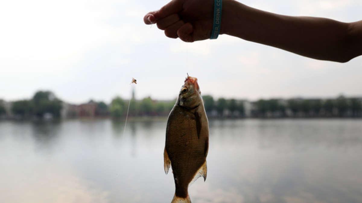 Fischwilderei